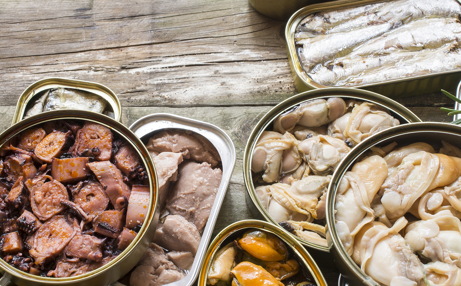 Assortment of cans of canned with different types of fish and se